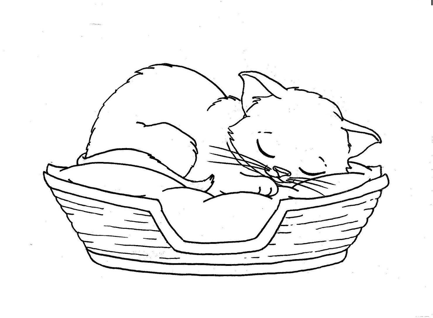 Cats Sleeping Coloring Picture For Kids