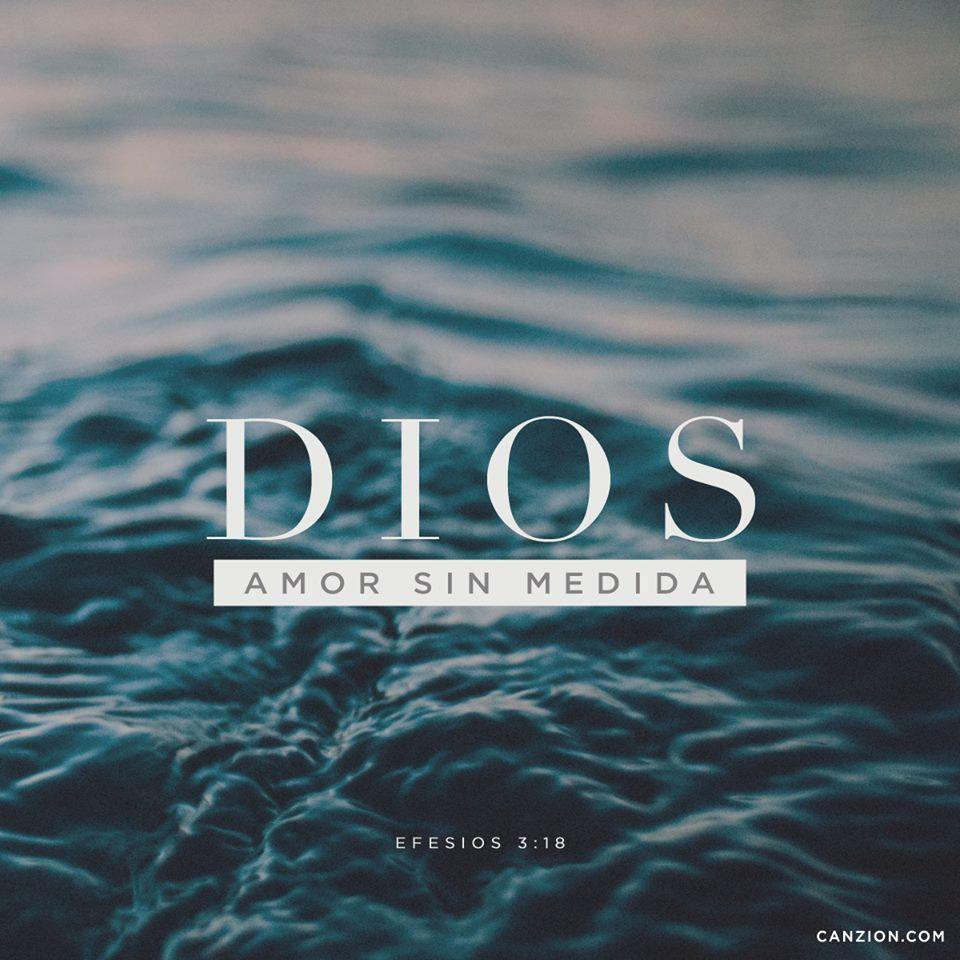 Dios Es Amor Sin Medida Frases Pinterest Dios Dios Es Amor Y