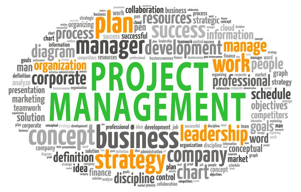 Complete project management is assured Integra Associates - project management