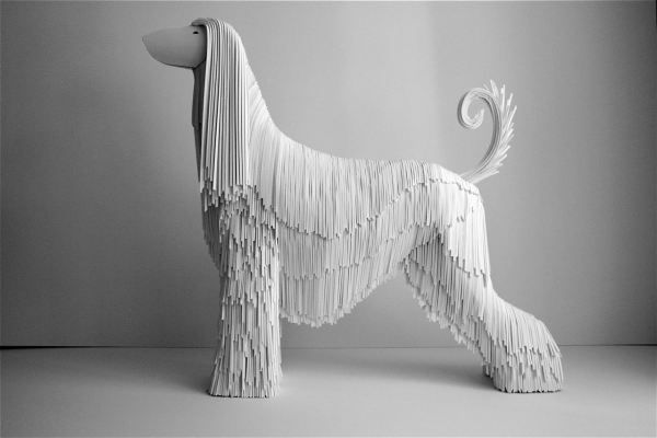 incorporate dog into display to emphasize durability plus add warmth