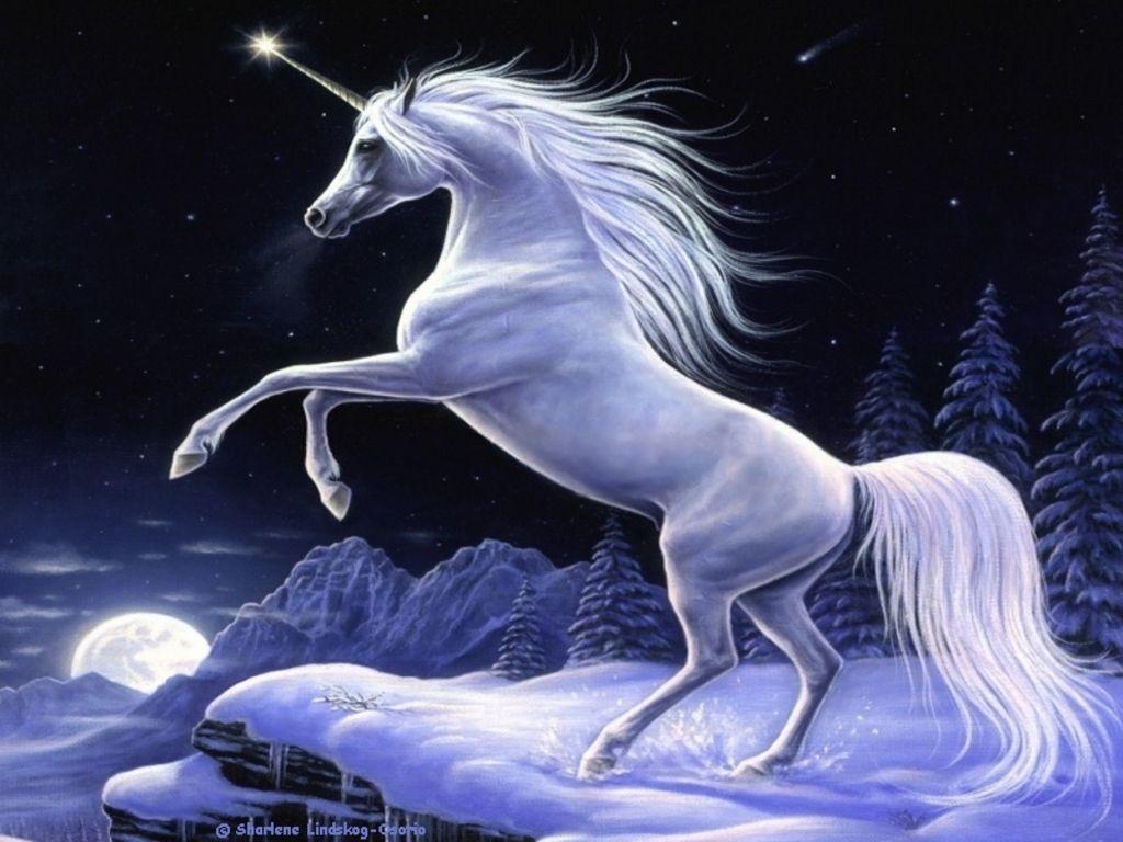 Best Wallpaper Horse Magic - ccaf024022a037c6a7fa2b920c731431  Graphic_267178.jpg