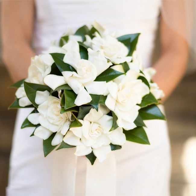 White Gardenias Bouquet My Mother Had White Gardenias When She Got Married Gardenia Bridal Bouquet Gardenia Wedding Gardenia Wedding Bouquets