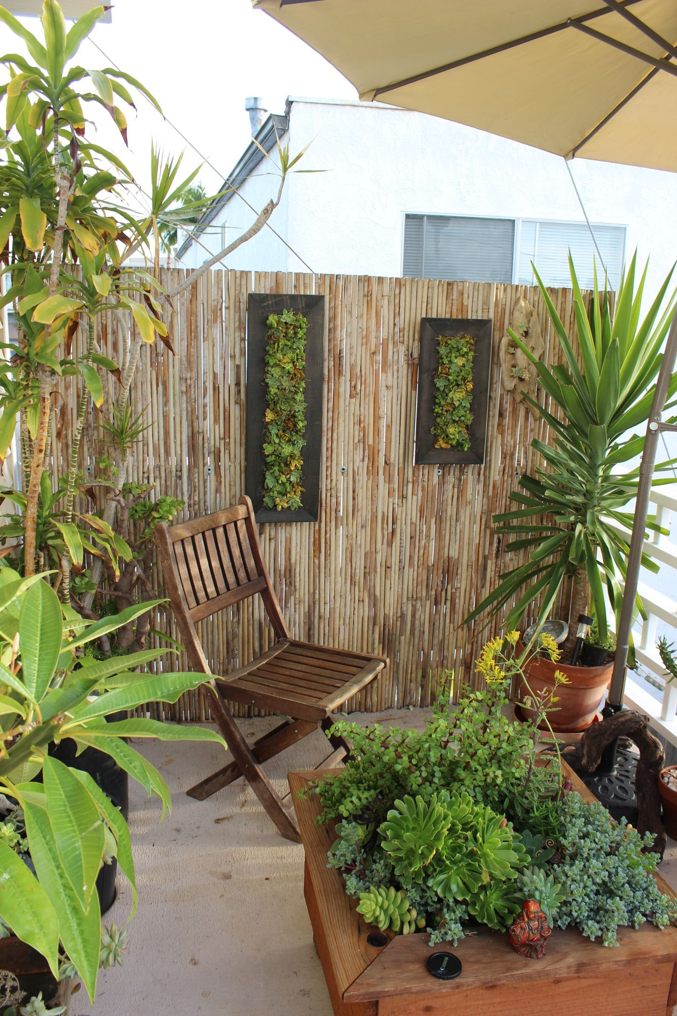 DIY Vertical Gardens and Custom made succulent living walls for sale ...