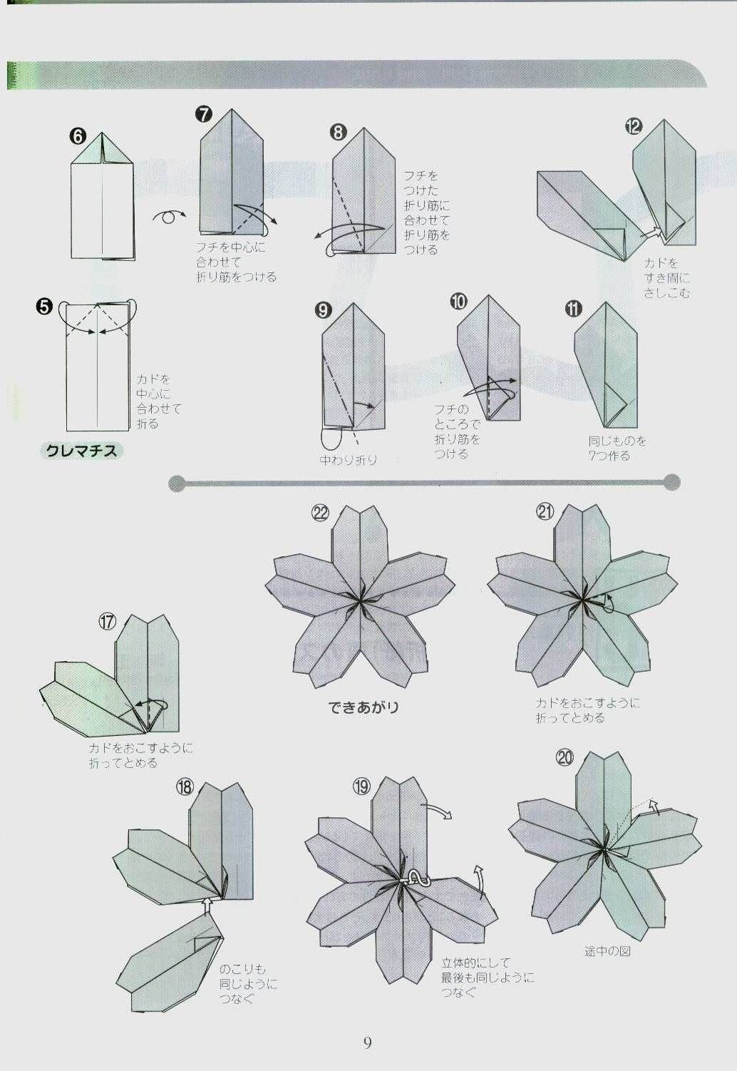 rare origami cherry blossom diagram download paper kawaii [ 1034 x 1502 Pixel ]