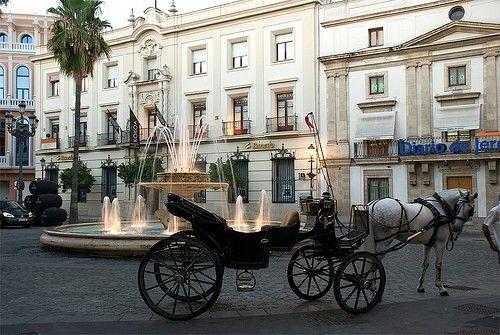 JEREZ (Cadiz)