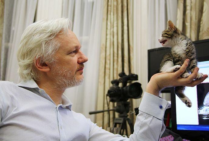 Assange'a kedi hediyesi