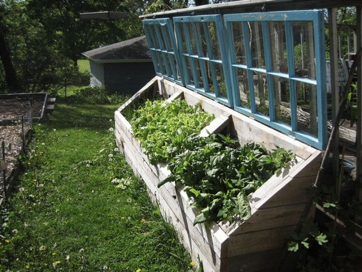 Greenhouse Garden Boxes