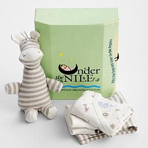 Organic new baby gift set from redenvelope things for evie organic new baby gift set from redenvelope negle Gallery