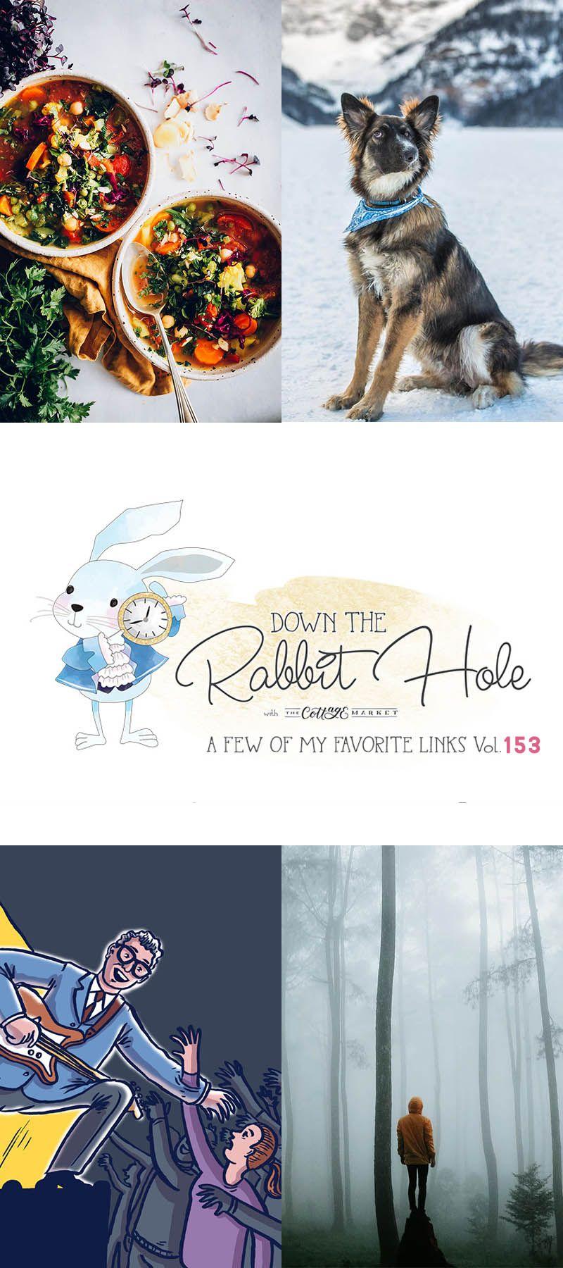 Down the Rabbit Hole Where Fun Links & Pet Rescues Meet