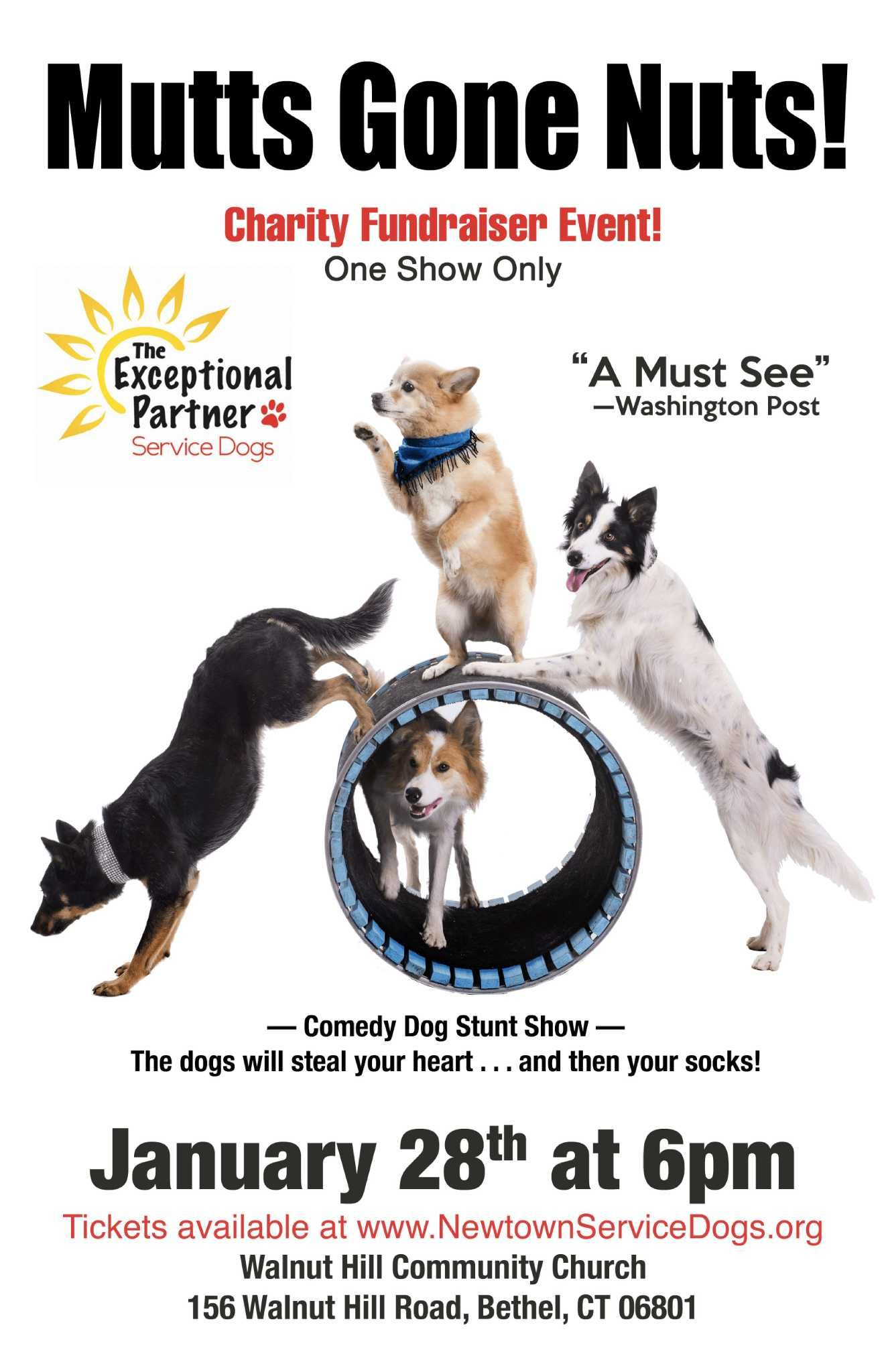 Happy Pup Happy Pet Owner Here Is How For More Information