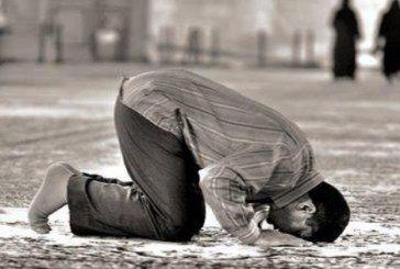 صلاة الحاجة ودعائها وحكمها وكيفيتها Islamic Pictures Islamic Quotes Wallpaper Muslim