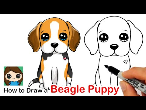 6830 How To Draw A Beagle Puppy Dog Easy Youtube Puppy Drawing Easy Cute Drawings Draw So Cute Dog