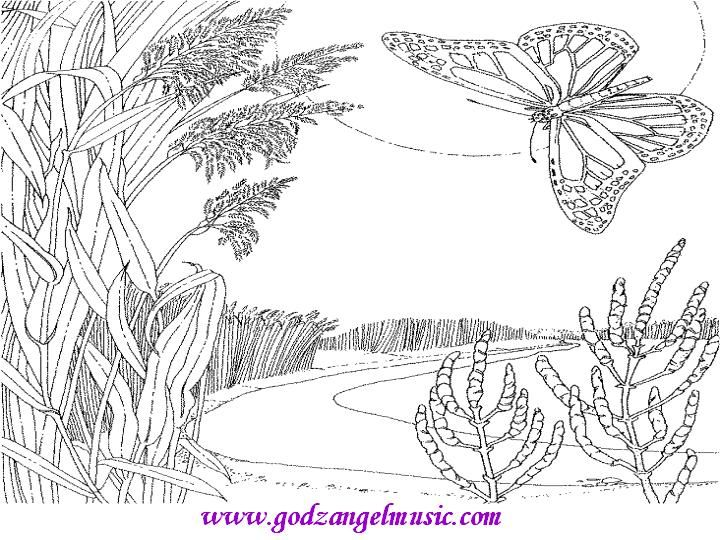 Free Printable Coloring Pages Of Sky Scene