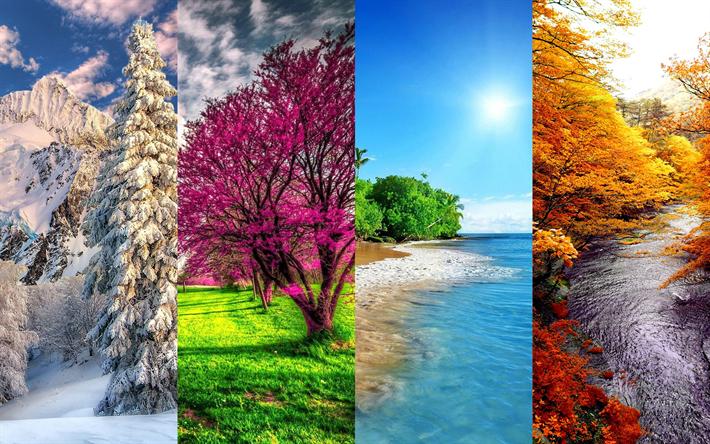 T l charger fonds d 39 cran 4 saisons 4k hiver printemps t automne saisons concepts - Printemps ete automne hiver et printemps ...