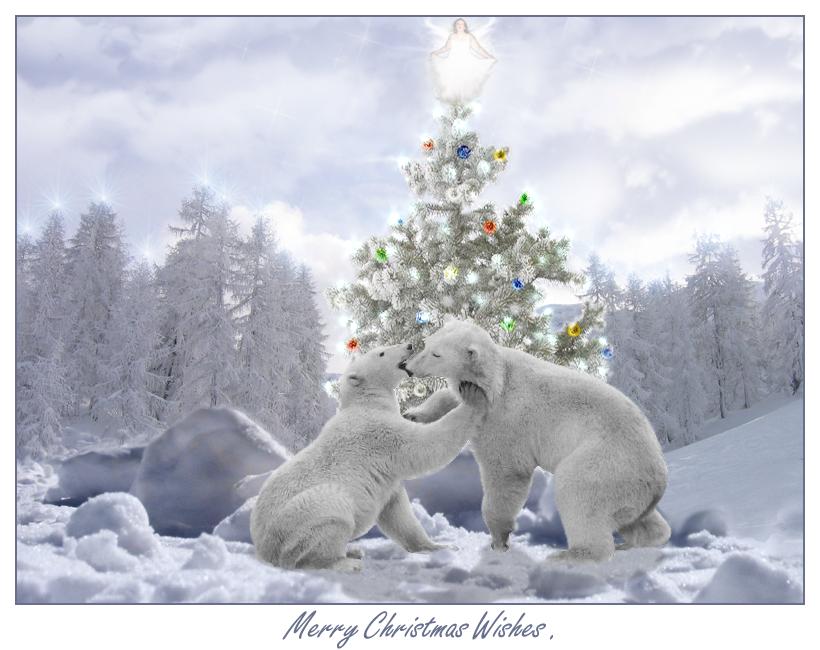 Christmas-Polar Bears | Holiday-Christmas | Pinterest