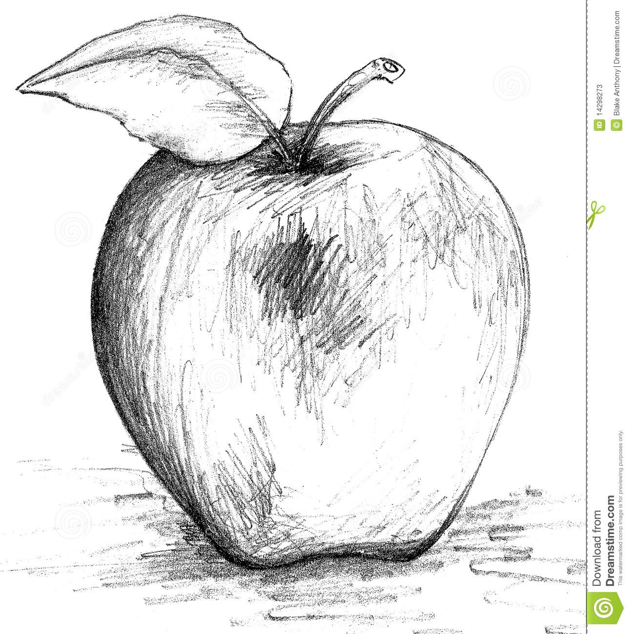 Illustration about pencil drawing sketch of an apple illustration