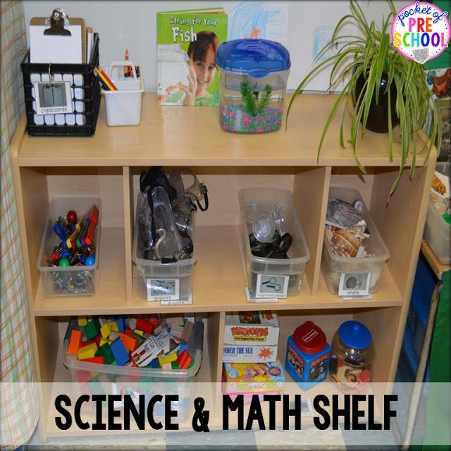Math And Science Classroom Decorations ~ Math and science shelf in my discovery center classroom