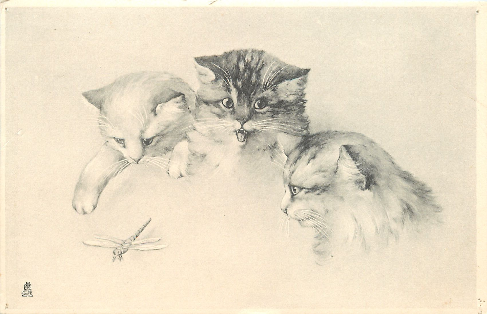 Full Sized Image Heads Of Three Kittens Looking Down On Dragon Fly Tuckdb Cats Illustration Kitten Images Cat Art