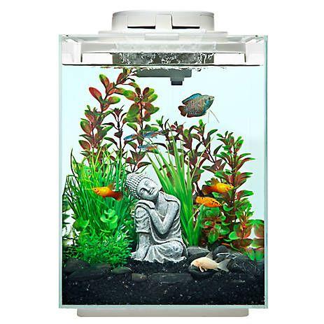 Top Fin® Revival Waterfall Gallon Desk Aquarium fish