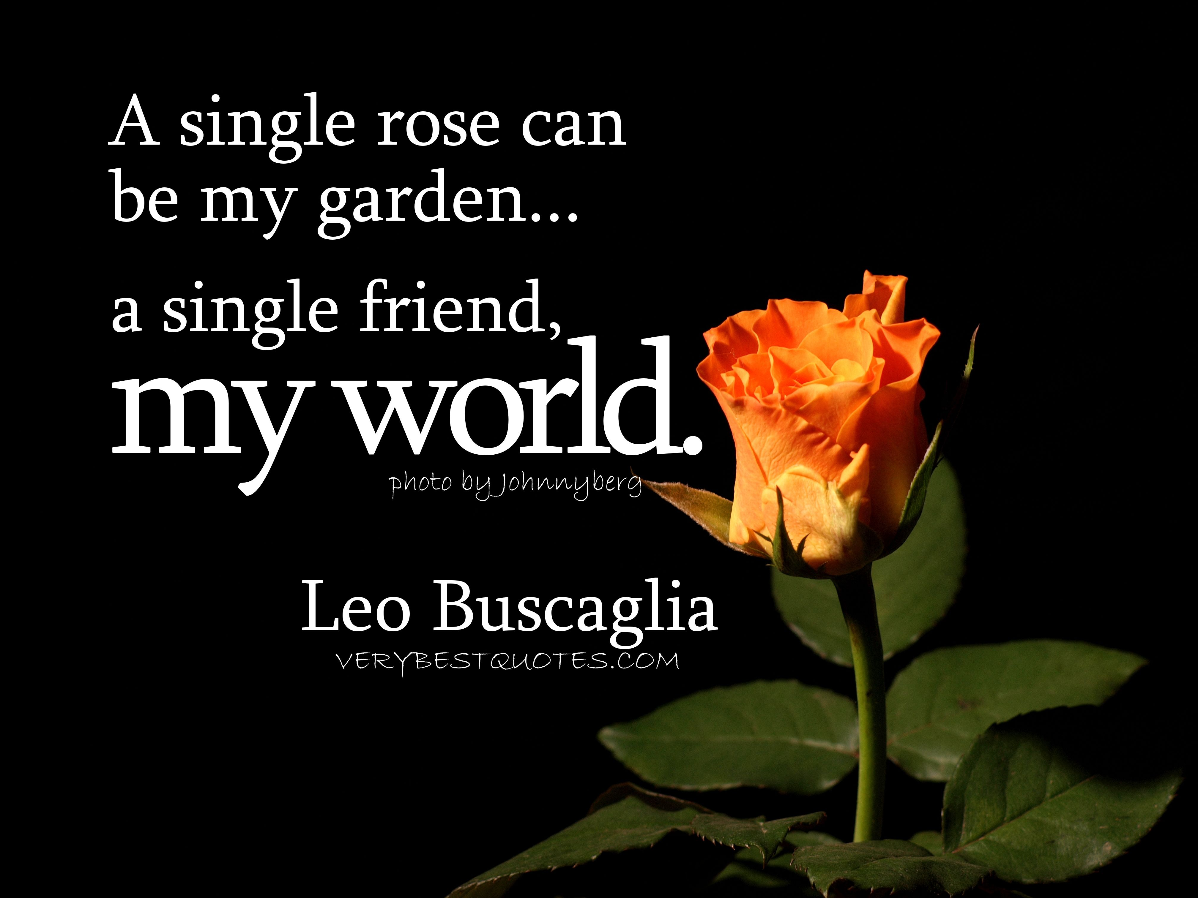Pictures And Quotes About Friendship My World  Leo Buscaglia Inspirational Picture Quotes And