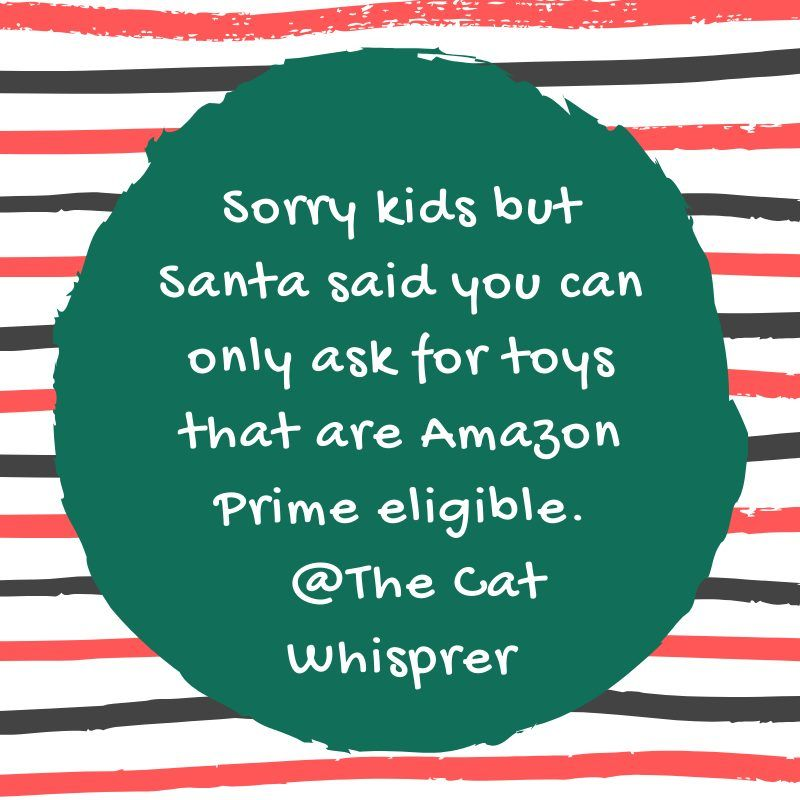 25 Funny Shopping Quotes For The Holiday Season Shopping Quotes Funny Shopping Quotes Sarcastic Quotes