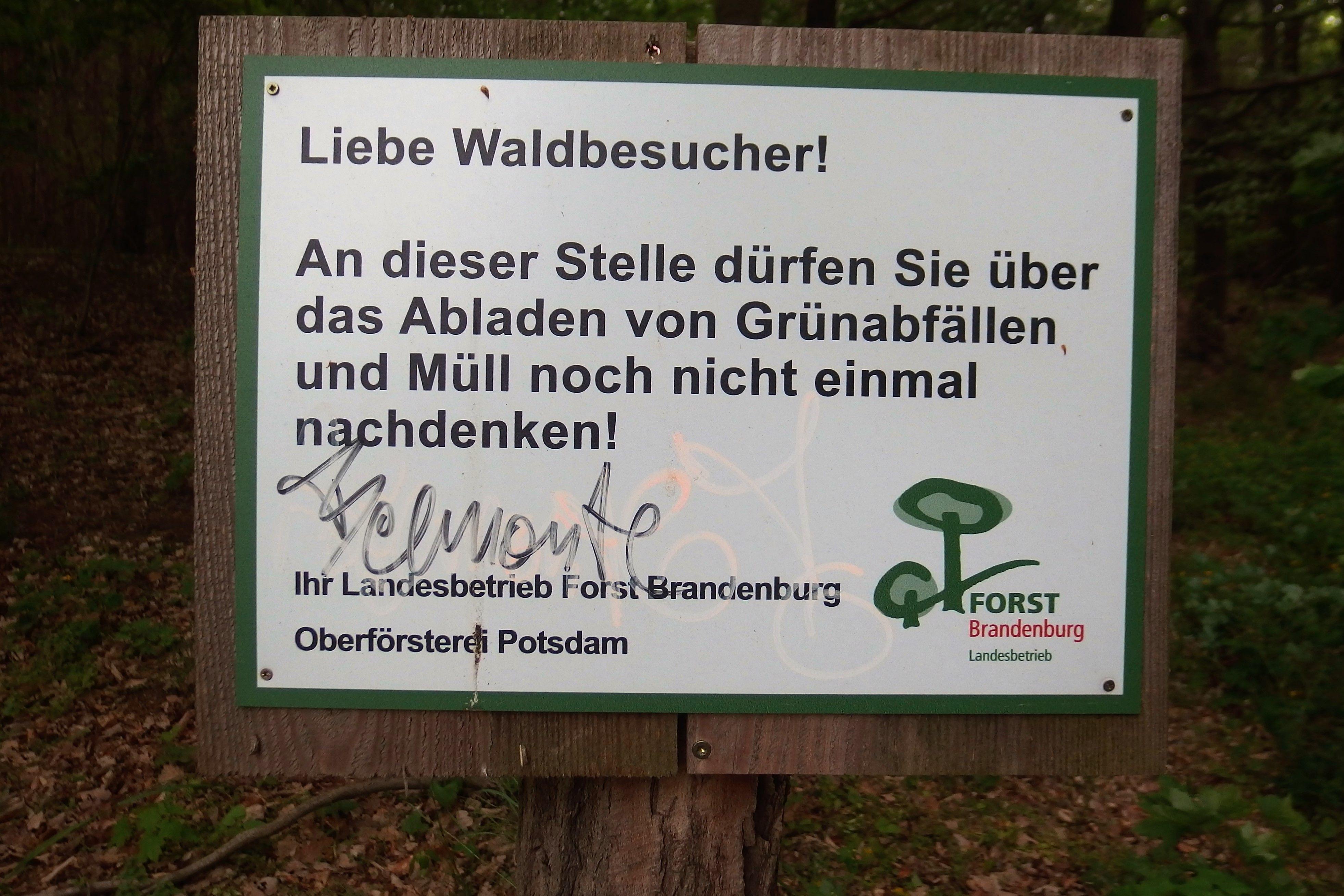 Königswald