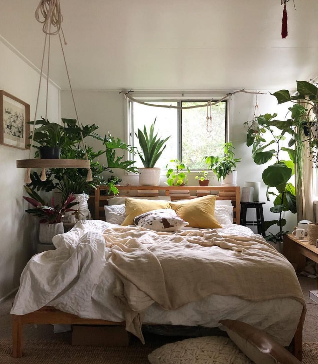 The Sill On Instagram Imperfectly Perfect Sunday Dear Plants Aesthetic Room Decor Aesthetic Bedroom Room Decor Bedroom
