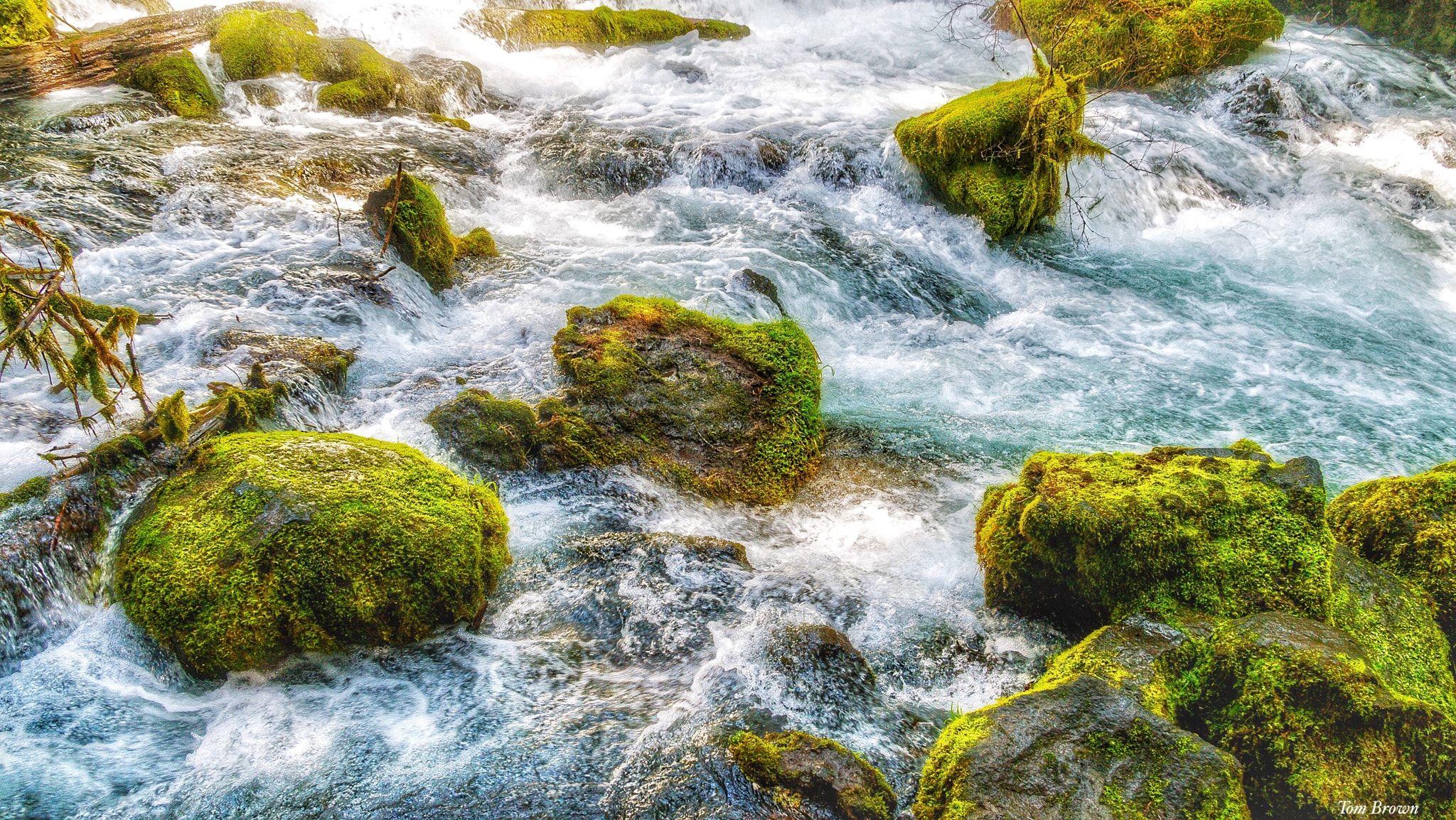 'Mossy Rocks In The Stream' -