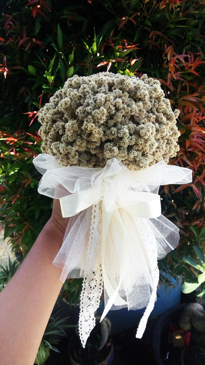 Bunga Edelweis Bunga Abadi Tipe Buket Wedding Edelweis