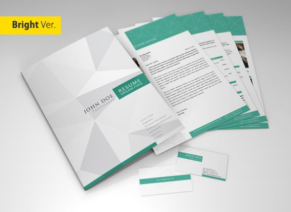 Professional Resume/CV Template on Pantone Canvas Gallery Graphic - resume folder