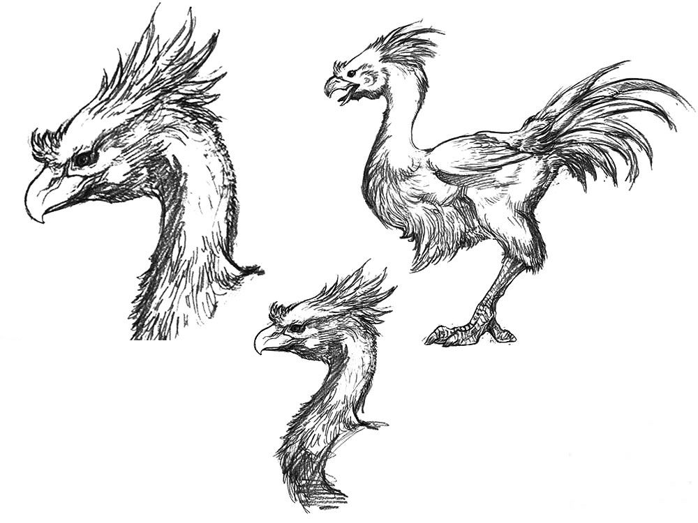 Chocobo Sketch From Final Fantasy Xv