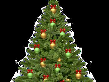 Arboles De Navidad Png Con Fondo Transparente Navidad Png Imagen Romantica De Amor Frases Romanticas De Amor