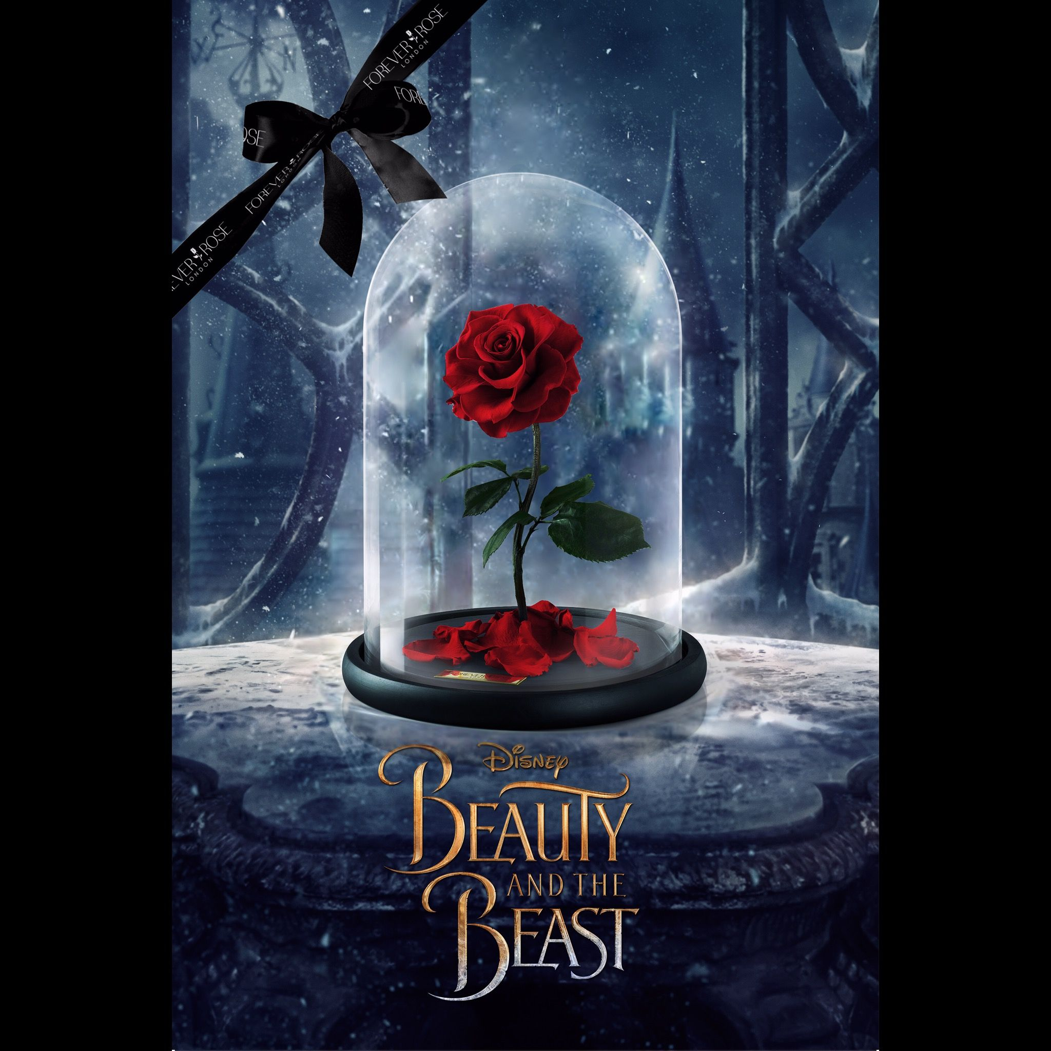 Official Disney Beauty And Beast Rose By Forever Rose