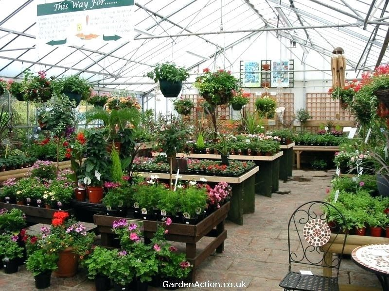 Pin By Aldina Hanifah On Garden Shop Ideas In 2020 Garden Center Plant Nursery Garden Center Displays