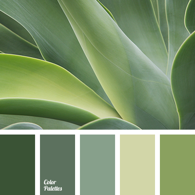 Chlorine chlorine color cold shades of green color for Colors shades of green