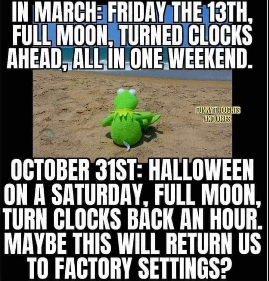 Pin By Jalyssa On 2020 Funny Halloween Memes Funny Thoughts Just For Laughs