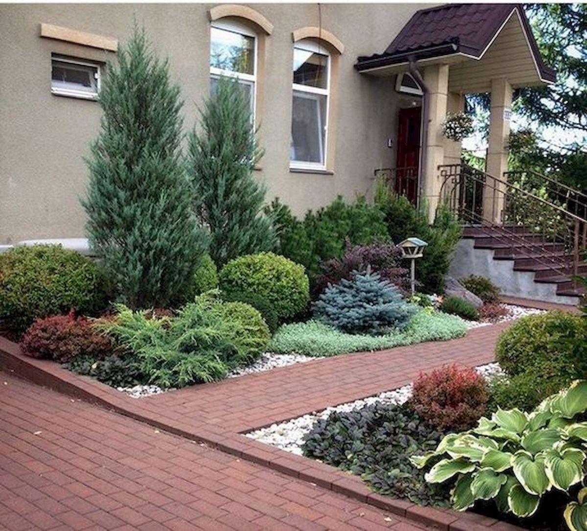 60 Beautiful Front Yards And Backyard Evergreen Garden Design Ideas (1 #modernfrontyard
