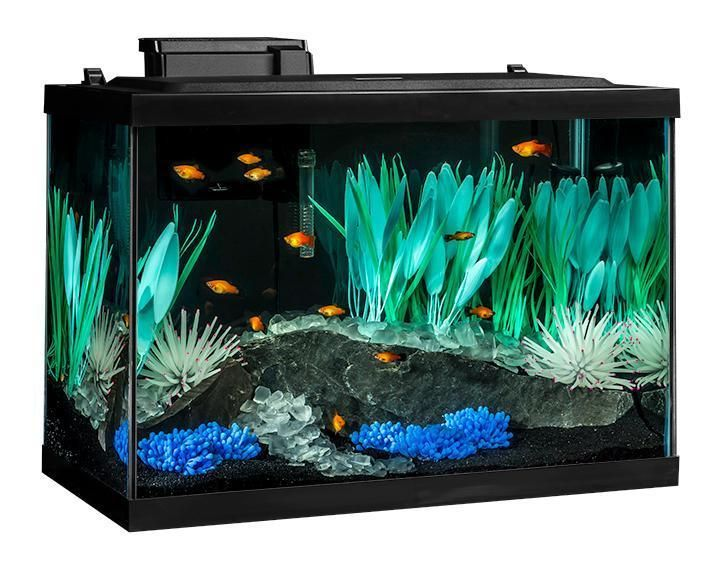 Aquarium 20 Gallon Kit Led Light Fish Tank Big Large Set With Hood Heater Filter Big Fish Tanks Aquarium Kit Aquarium Fish