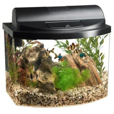 Mini Bow 5 Desktop Aquarium - Black  Fish  Pets  950c18e0bc3f