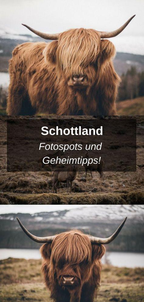 Schottland Fotospots - Roadtrip Schottland #travelscotland