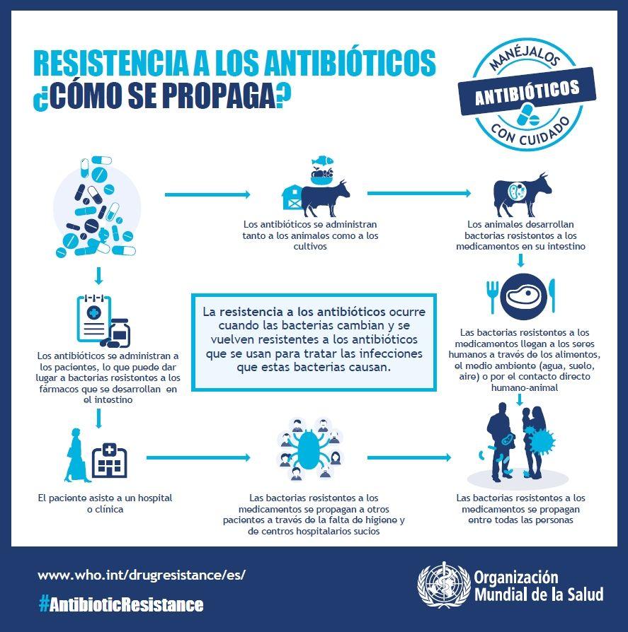 como-se-transmiten-resistencias-antibioticos.jpg (887×894 ...