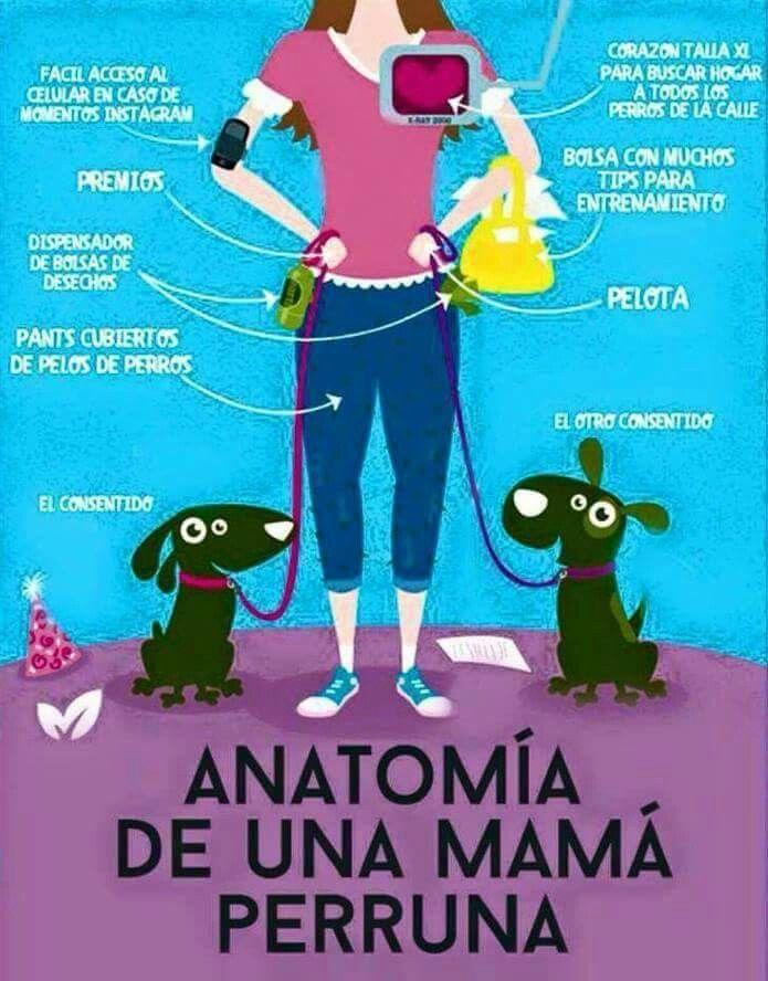 Anatomia de una mamá perruna #perros #doglover #petlover | Corazón ...