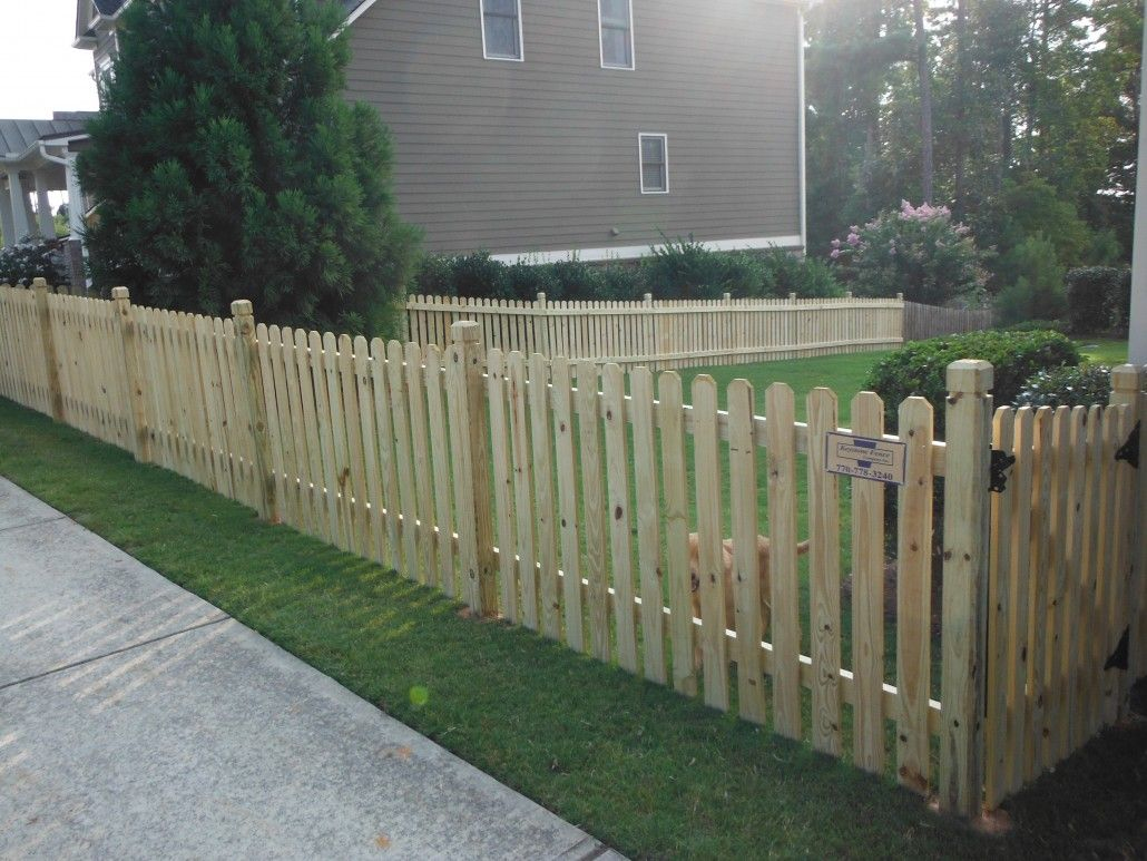 Walk Gate 4 Foot Pressure Treated Pine Fence Wood Install Gate Hardware Painted White Backyard Fences Fence Design Wood Fence