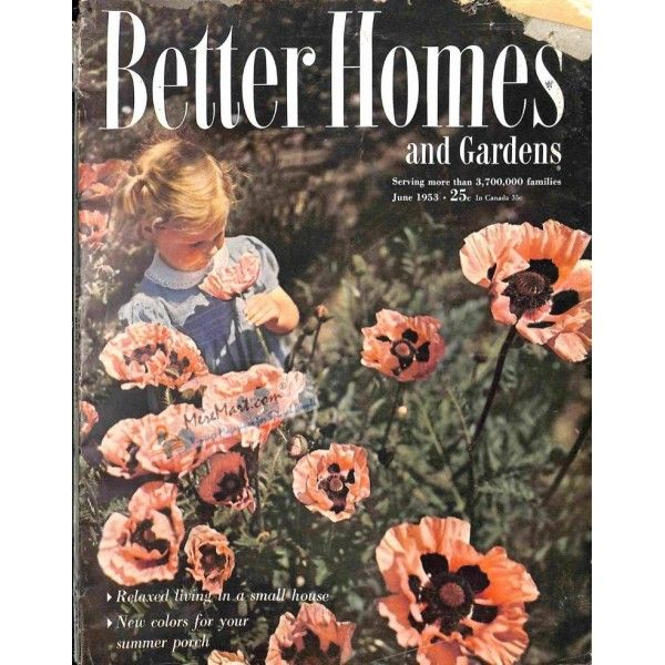 ccc095090a412fdfe7f5145a74909a7d - Better Homes And Gardens Poppy Pattern