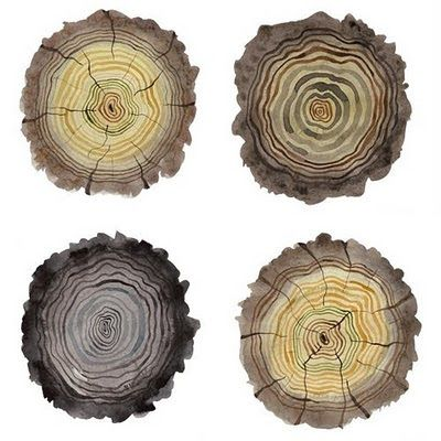 It's (K)not Wood: log illustrations by golly bard