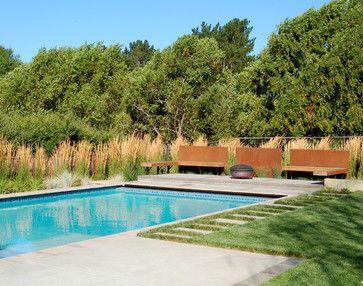 Fenske Pool Contemporary Pool San Francisco Huettl Landscape Architecture Backyard Pool Landscaping Pool Landscaping Grasses Landscaping