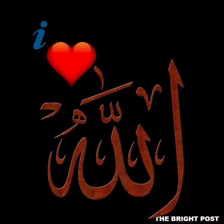 I Love Allah Dp Allah Beautiful Islamic Quotes Whatsapp Dp