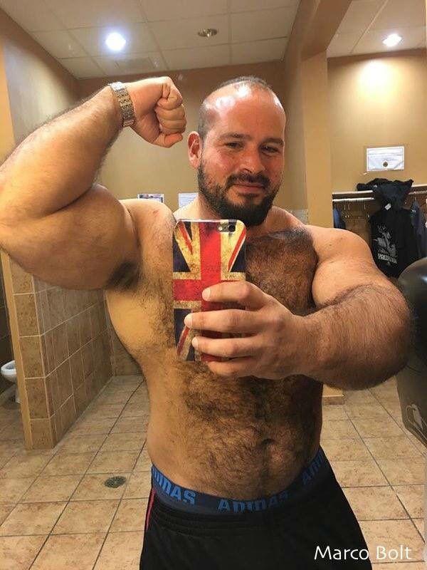 Hairy Bear Blog