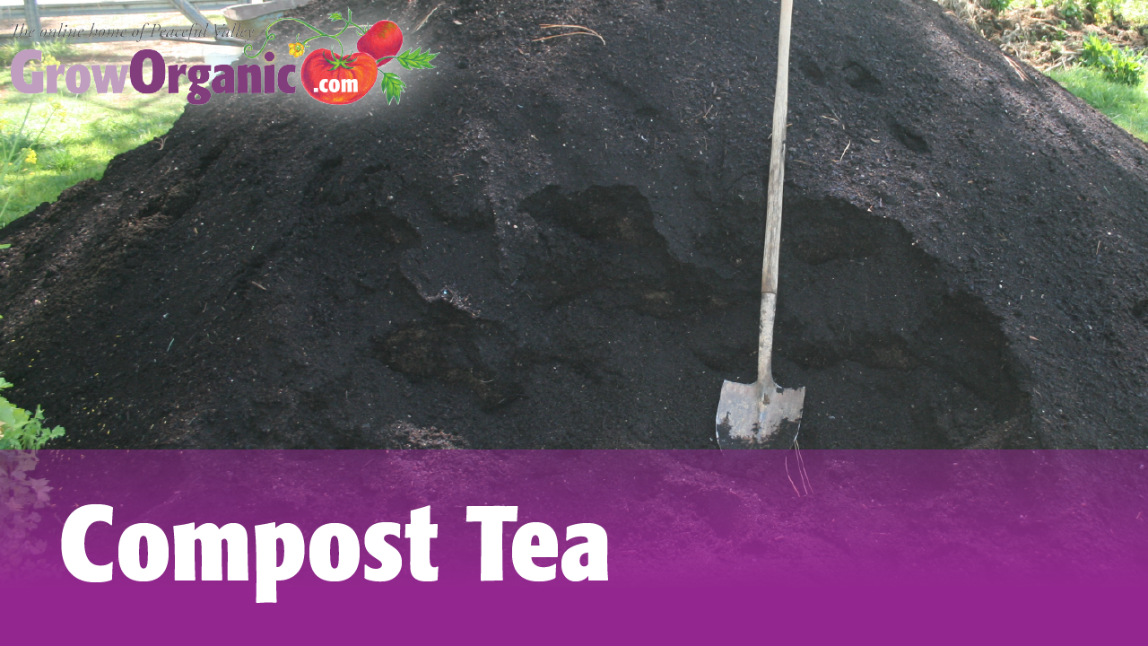 How to brew compost tea. Watch our how-to videos: http://www.groworganic.com/organic-gardening/videos/compost-tea  #groworganic #composttea #compost