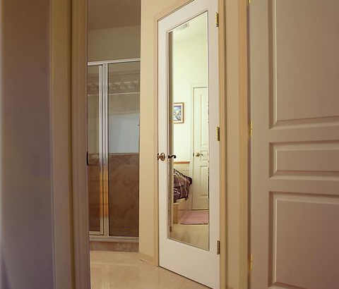 Impression Mirror Door Provides Full Length Mirror On One Side Decorative Three Panel Design On